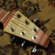 Galasso Skate Guitar 01